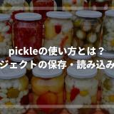 pickleの使い方とは?